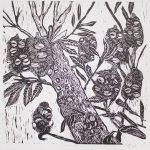 Banksia Tree