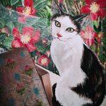 BY THE WINDOW- Cadbury the cat
