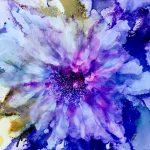 Purple folly