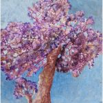 It's Jacaranda Time Again – a Purple Wonder