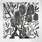 Banksia and Tea Tree