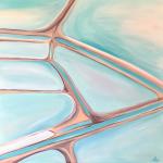 Salt Flats, Shark Bay WA – The Salt Series