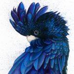 Black & Blue (Ltd Ed Print)
