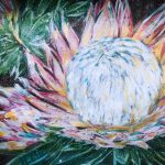 ONWARDS TO GLORY – SPRING PROTEA