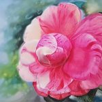 Sensual Camellia
