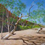 On the Finke River Northern Territory