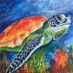 Colourful Turtle
