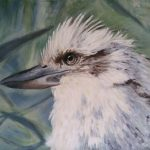 Mr Kook – Kookaburra Limited Edition Print