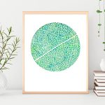 Reticulate leaf venation Ltd Ed Print