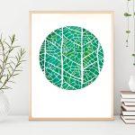 Cross venulate Leaf venation Ltd Ed Print