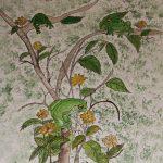 Frogs in a bush