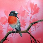 Feathery All-sorts No 8 – Rose Robin