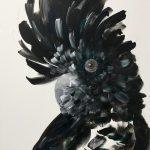 Black Cockatoo 1 – 1/100 Limited Edition Print