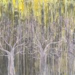 Abstract Trees CZ18033