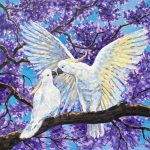 Love is in the air – Cockatoos and jacaranda