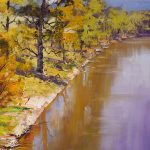 Tumut River Reflections